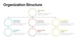 Organization Structure PowerPoint Templates